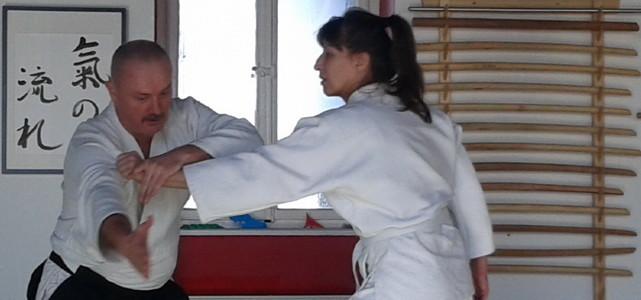 Vujsov mini seminar – maxi trening – 31.01.2015.