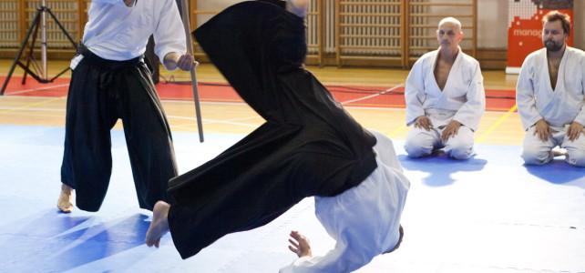 Kako izgleda napredni aikido trening