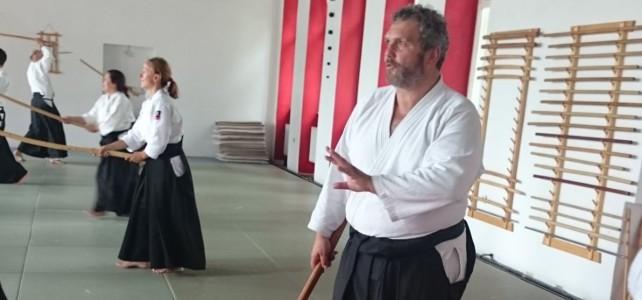Aleš Leskovšek, 4. Dan, Ki-Aikido Narodni dom, Ljubljana, 11. i 12.6.