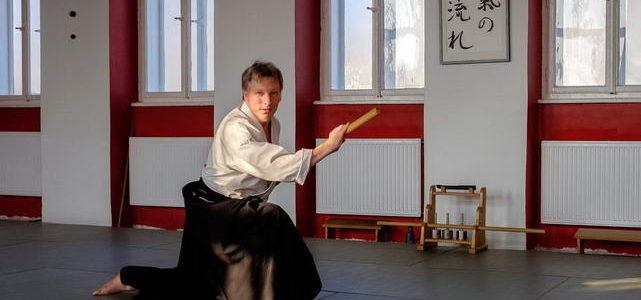 Michael Holm aikido seminar