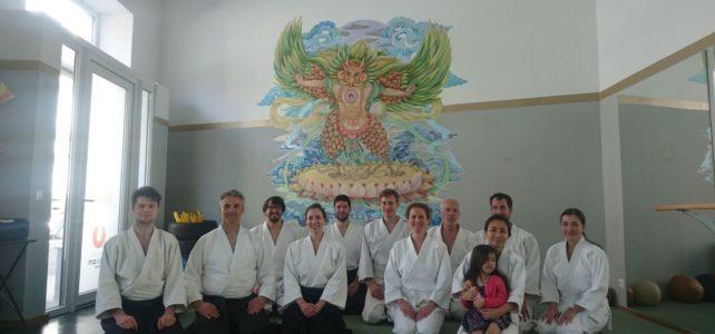 Marijan Kudrna seminar at Ki Aikido Wien